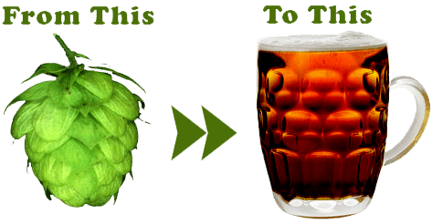 Горькое пиво