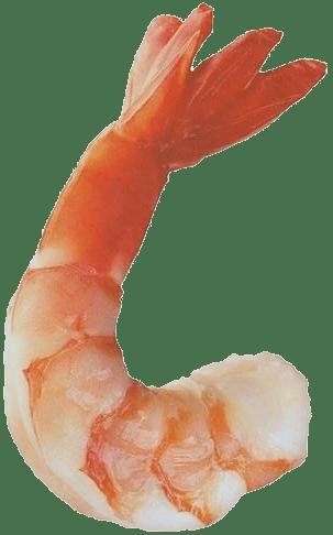 Вареная креветка