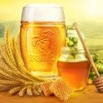 Пиво и мед