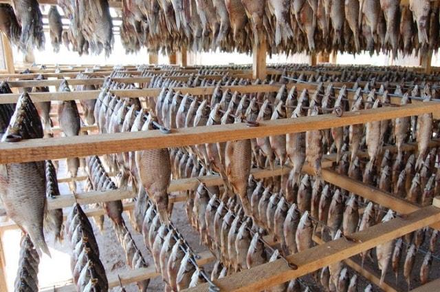Вяленая рыба Красноярск
