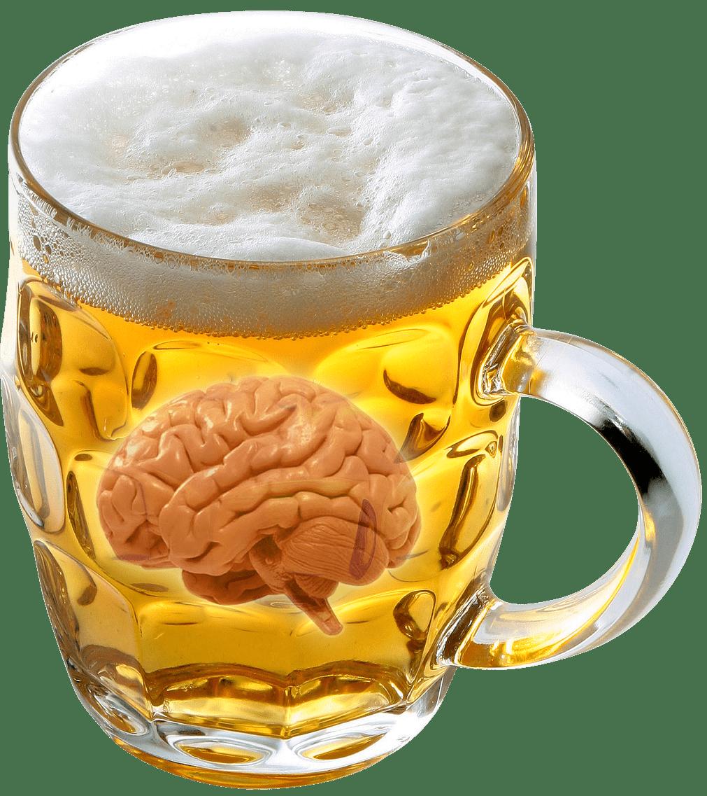 Пиво увеличивает способности мозга