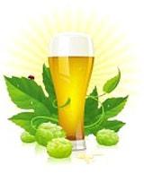 Пиво Братск