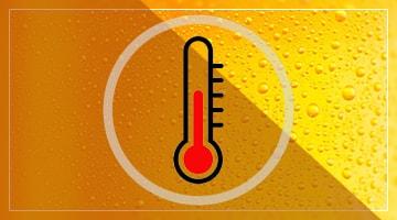 Температура созревания лагерного пива