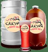 Сакура Вишневое пиво