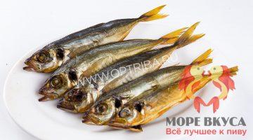 Ставридка х/к