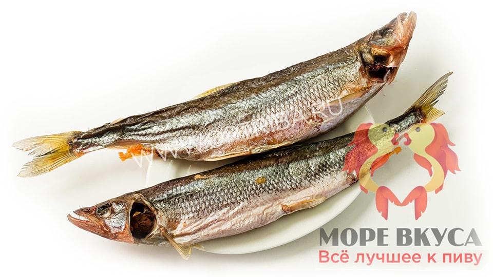 Вяленая рыба Новосибирск